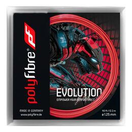 Evolution 12m